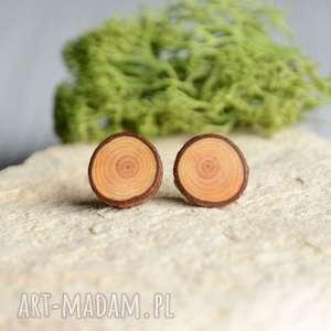 Proste drewniane kolczyki na srebrnych sztyftach, wkrętki, sztyfty, modrzew, drewno