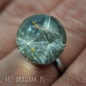 pierścionek kula z nasionami dmuchawca, stal chirurgiczna, żywica