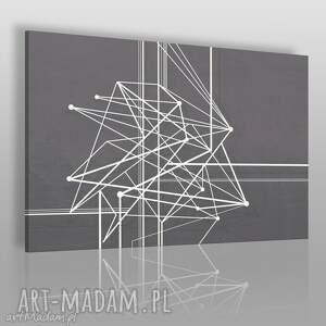 obraz na płótnie - linie krzywe 120x80 cm 47801 , krzywe, linie, geometryczny
