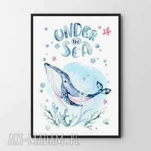 Plakat obraz wieloryb 50x70 cm b2 pokoik dziecka hogstudio