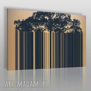obraz na płótnie - drzewo kod kreskowy 120x80 cm 19901 , drzewo, kod, kreski