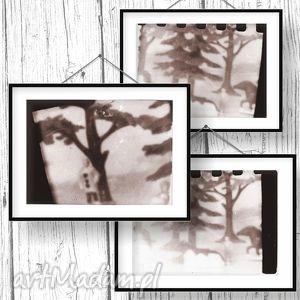 camera obscura tryptyk fotograficzny, fotografie, sepia, tryptyk