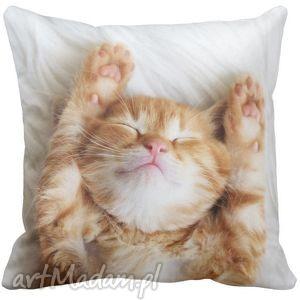 Poduszka dekoracyjna rudy KOT 6541 - kot, puszysty, kotek
