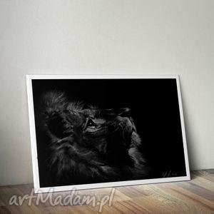 lew czarne tło, lew, ciemny, grafika, rysunek, szkic, skan