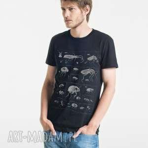 koszulki bugs t-shirt męski