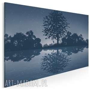 obraz na płótnie - noc jezioro gwiazdy 120x80 cm 58901, drzewo, las
