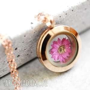 mini chryzantema argyrophyllum łańcuszek medalion, kwiat, płatki, natura, medalion