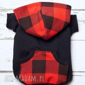 bluza dla psa ubranko ubranie yorka ratlerka