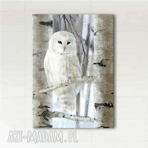 obraz - biała sowa skandynawski wydruk na płótnie, obraz, sowa