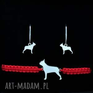 boston terrier - komplet srebrny, pies, terrier, bransoletka