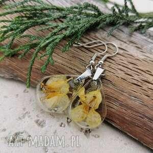kolczyki z pastelowymi kwiatami rzepaku k3, na prezent, biżuteria eko