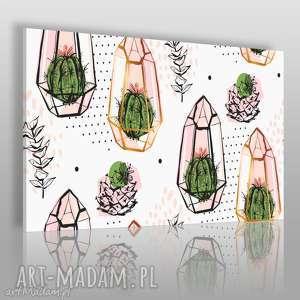 handmade obrazy obraz na płótnie - kaktusy sukulenty - 120x80 cm (61601)