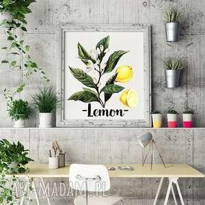 plakaty plakat lemon