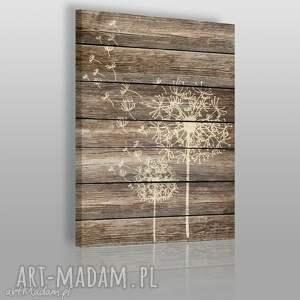obraz na płótnie - dmuchawce drewno - 50x70 cm 07501 - dmuchawce, drewno, deski