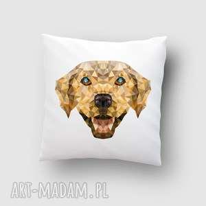 poduszka z psem, poduszka, grafika, dom, pies, lowpoly, labrador