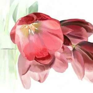 obraz na płótnie tulipany romantyczne 120x70, tulipany, z tulipanami