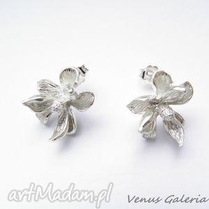 venus galeria kolczyki srebrne - magnolie białe sztyft, biżuteria, srebro