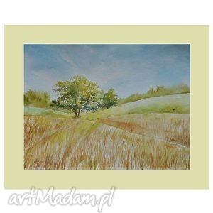 letnie pola, akwarela, pejzaż, obraz