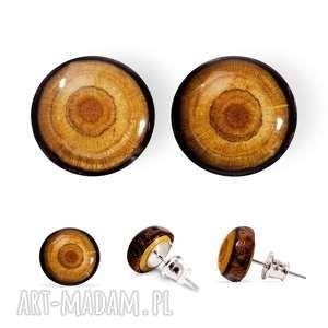 kolczyki sztyfty z drewna, drewno, las, natura, sztyfty, wkrętki, minimalizm