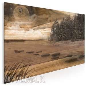 obraz na płótnie - pejzaż las drewno 120x80 cm 41301, drewno, deska