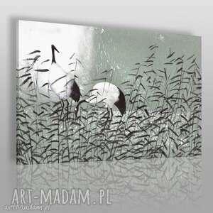obraz na płótnie - dumne żurawie 120x80 cm 56202, żurawie, woda, tatarak, pejzaż