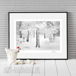 ręcznie zrobione fotografie autorska fotografia analogowa, pudrowane drzewa