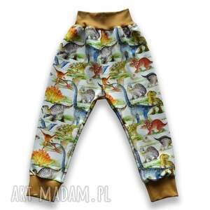 dinozaury kolorowe spodnie dla dziecka, z dresówki rozmiary 56-116