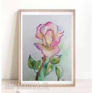 Obraz akwarelowy ROŻA III format 18/24 cm , akwarela, kwiaty, farba, róża, papier