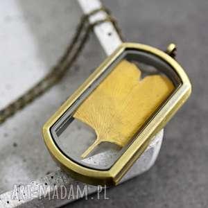 liść ginkgo brązowy łańcuszek, liść, ginkgo, natura, żółty, medalion, zawieszka