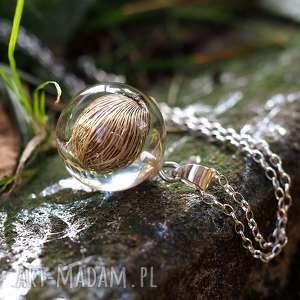 naszyjnik roślinny malaga, srebrny łańcuszek - żywica, srebro, natura