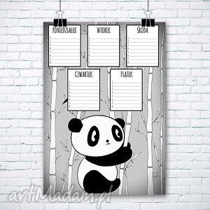 Plan lekcji A3, lekcje, szkoła, panda, miś
