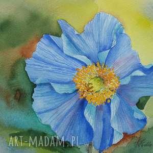 Prezent Oryginał akwarela 4 , akwarela, sztuka, obraz, kwiat, prezent