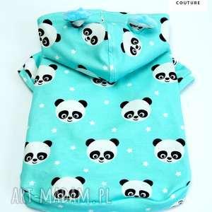 Ubranie dla psa. Ratlerek ubranko. Bluza Chichuchaua. małego psa