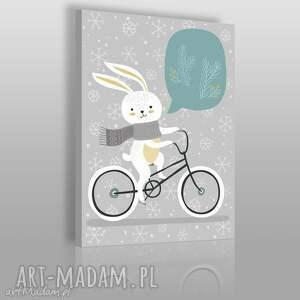 obraz na płótnie - zwierzę królik zając 50x70 cm 69007, zając, królik, rower