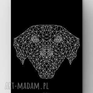 pies black a3, plakat, grafika, dom, pies, labrador, outline