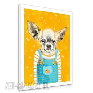 ludesign gallery obraz na płótnie - 60x80cm pies chihuahua wysyłka w 24h 02175