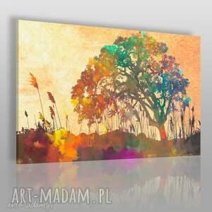 obraz na płótnie - łąka polana drzewo kolorowy 120x80 cm 76201, drzewo, natura
