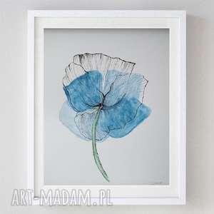niebieski mak-akwarela formatu a4, mak, akwarela, papier