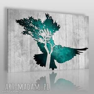 obrazy obraz na płótnie - gołąb turkusowy 120x80 cm 33402, gołąb, deski, drewno