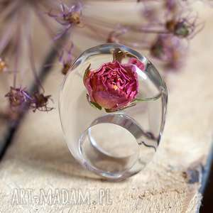 pierścionek z żywicy prawdziwą różową różą, róża, żywica, kwiaty, natura, eco