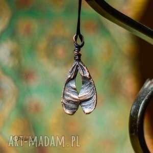 ash tree seed - naszyjnik z prawdziwymi nasionami jesionu noskami - naszyjnik, wisior