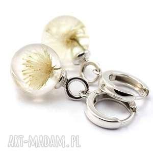 mini kolczyki z dmuchawcami, żywica i srebro, dmuchawce, dmuchawiec, ślubna