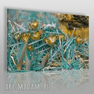 obraz na płótnie - trawa łąka 120x80 cm 08201 , łąka, trawa, abstrakcja