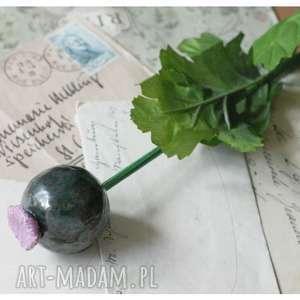 pod choinkę prezent, czosneczek zielony, ceramika, kwiat, czosnek