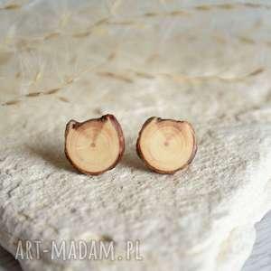 Drewniane kolczyki na srebrnych sztyftach, drewno, natura, las, drewniane, sztyfty