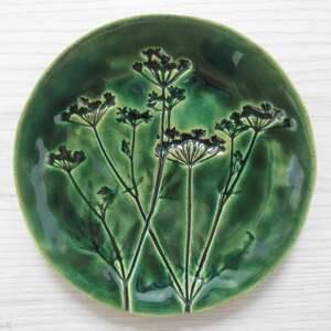 ceramika roślinny zielony talerzyk, organiczny z roślinami