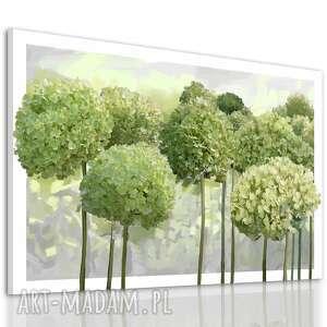 obraz do salonu drukowany na płótnie z kwiatami, zielone kwiaty hortensji