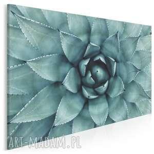 vaku dsgn fotoobraz na płótnie - turkusowy kwiat 120x80 cm 901801, fotoobraz
