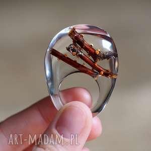 pierścionki pierścionek z żywicyz naturalnymi gałązkami drzewa