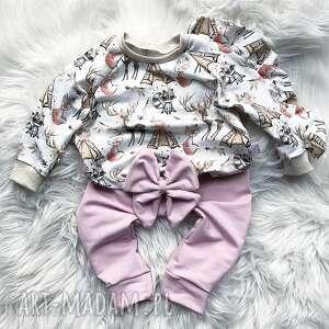 bluza i spodnie dresowe liski, dres dla dziecka, dziecko